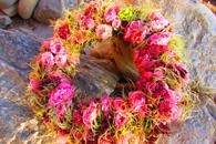 Blütenallerlei